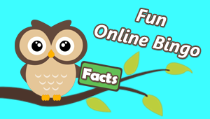 Fun Online Bingo Facts