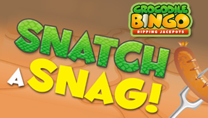 Crocodile Bingo Promotion