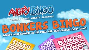 Angry Bingo Promotion